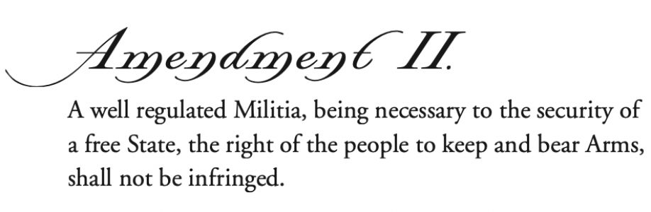 Protect the Second Amendment - P2A - Cover Image
